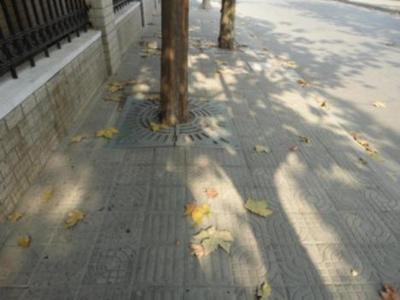 99338__468x_made-in-china-tactile-paving-010.jpg