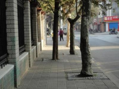 99339__468x_made-in-china-tactile-paving-011.jpg